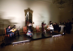 Die atemberaubende Flamenco-Show war das Highlight am Abend